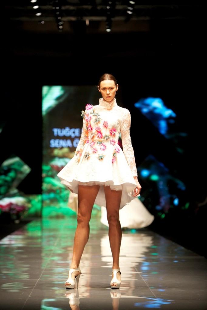 Fashion Show  (4) (Medium)