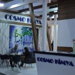 cosmo kimya