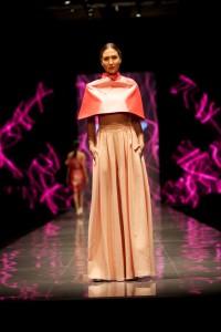 Fashion Show  (1) (Medium)